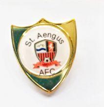 Custom Made Bespoke Shield Badge Your Choice of Crest/Logo/Writing Min Quantity 5